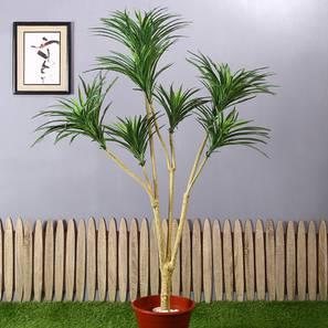 Angust artificial plant lp