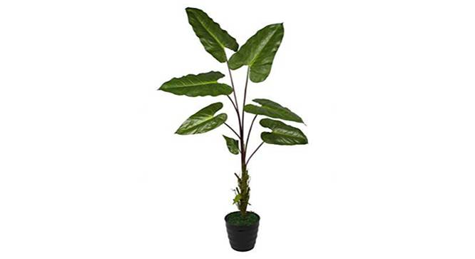 Deli Artificial Plant (Green) by Urban Ladder - Front View Design 1 - 315096