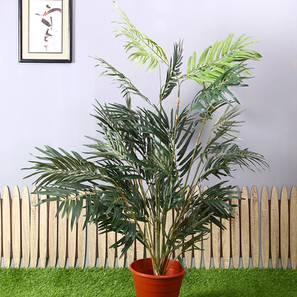 Cory artificial plant lp