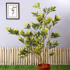 Indi artificial plant lp