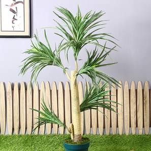 Brevi artificial plant lp