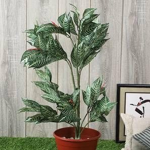 Calathea artificial plant lp