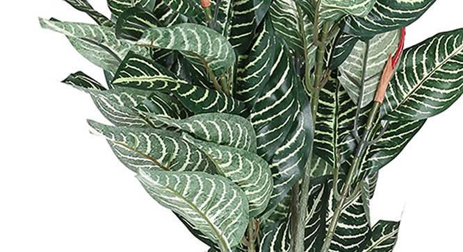 Calathea Artificial Plant (Green) by Urban Ladder - Design 1 Side View - 315145