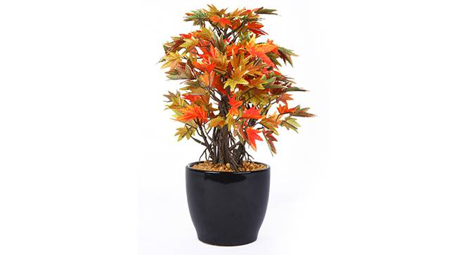 Acer Artificial Plant by Urban Ladder - Front View Design 1 - 315156