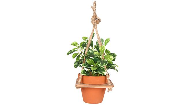 Arbor Artificial Plant (Green) by Urban Ladder - Front View Design 1 - 315186