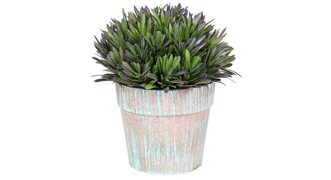 Scabre Artificial Plant (Purple) by Urban Ladder - Front View Design 1 - 315201