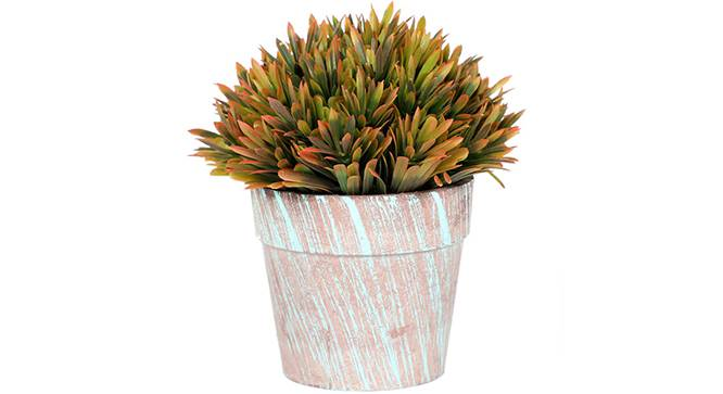 Scabre Artificial Plant (Brown) by Urban Ladder - Front View Design 1 - 315204