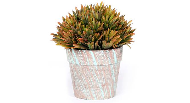 Scabre Artificial Plant (Orange) by Urban Ladder - Front View Design 1 - 315207