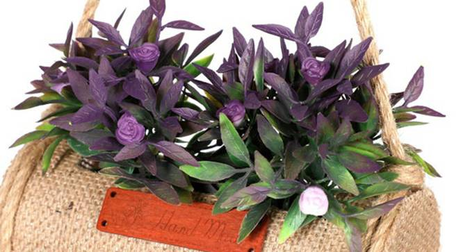 Jali Artificial Plant (Purple) by Urban Ladder - Front View Design 1 - 315222