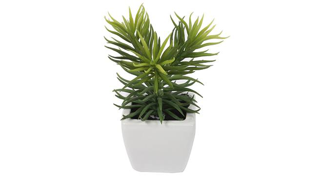 Kape Artificial Plant (Green) by Urban Ladder - Design 1 Side View - 315244