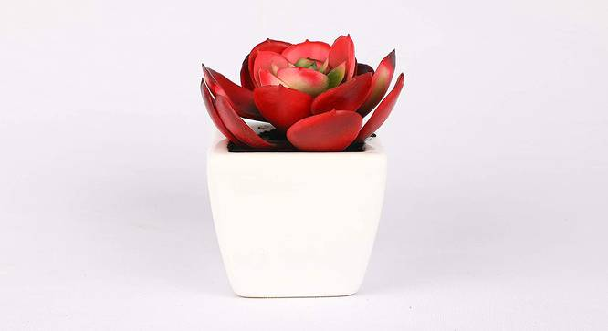 Delta Artificial Plant (Red) by Urban Ladder - Front View Design 1 - 315255