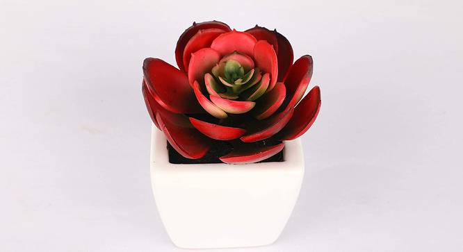 Delta Artificial Plant (Red) by Urban Ladder - Design 1 Side View - 315256