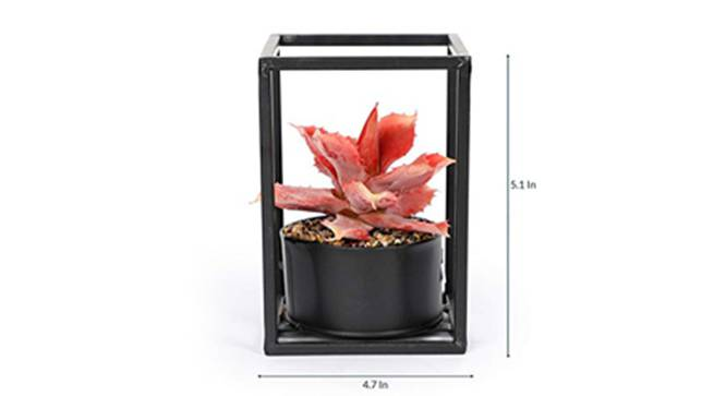 Virgat Artificial Plant (Red) by Urban Ladder - Design 1 Side View - 315262