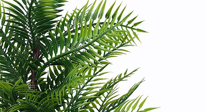 Molly Artificial Plant (Green) by Urban Ladder - Front View Design 1 - 315275
