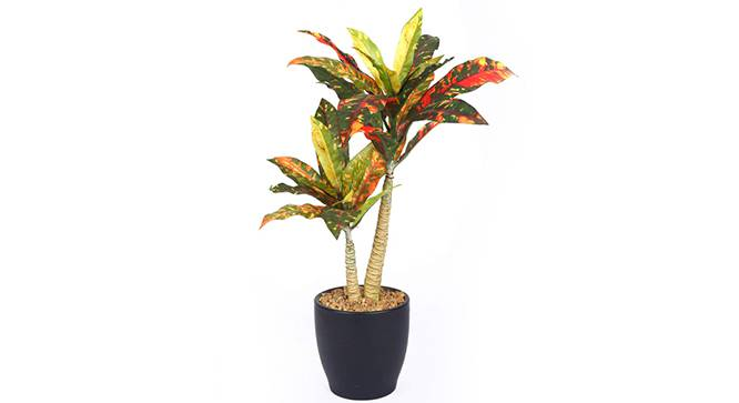 Montana Artificial Plant (Red) by Urban Ladder - Front View Design 1 - 315284