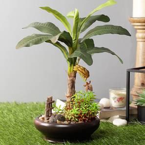 Denro artificial plant lp