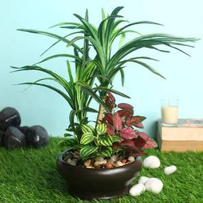 Burt artificial plant lp
