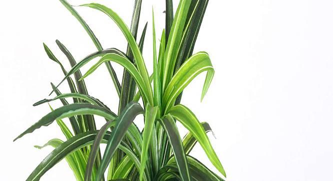 Burt Artificial Plant (Green) by Urban Ladder - Design 1 Side View - 315303