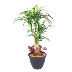 Utah green artificial plant lp