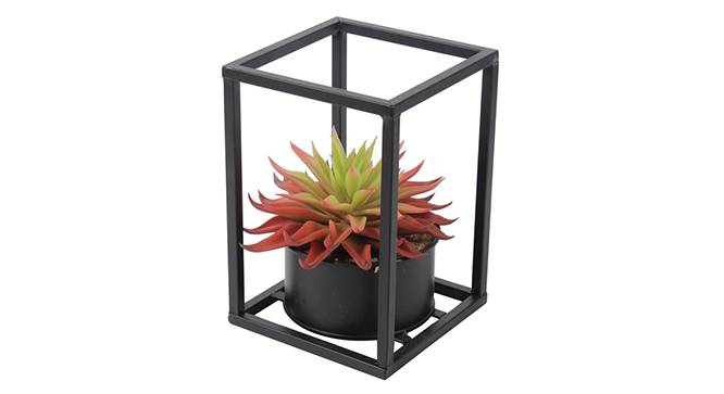 Sordi Red Artificial Plant (Red) by Urban Ladder - Design 1 Side View - 315321
