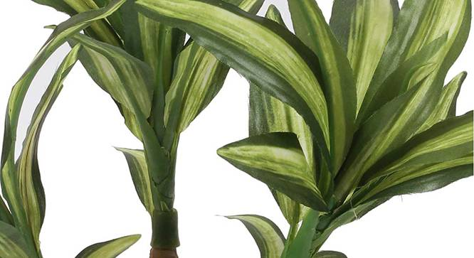 Kirk Artificial Plant (Green) by Urban Ladder - Design 1 Side View - 315327
