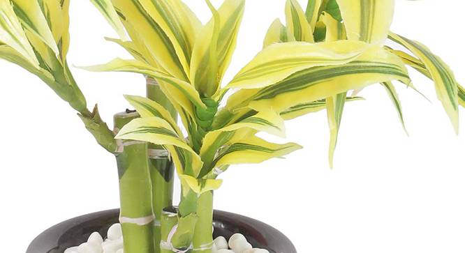 Yucci Artificial Plant (Yellow) by Urban Ladder - Front View Design 1 - 315335