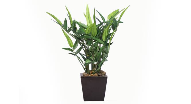 Pethe Artificial Plant (Green) by Urban Ladder - Front View Design 1 - 315338