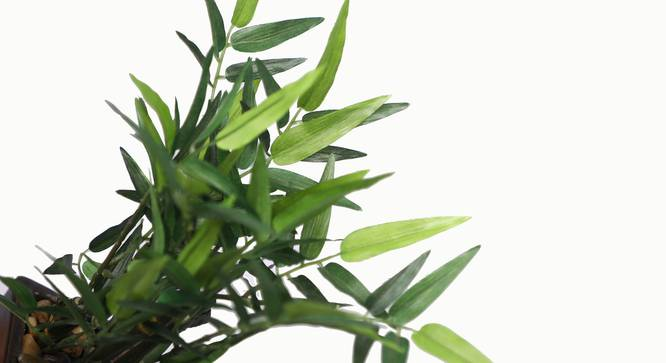 Pethe Artificial Plant (Green) by Urban Ladder - Design 1 Side View - 315339