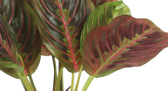 Walter Artificial Plant (Red) by Urban Ladder - Design 1 Side View - 315345