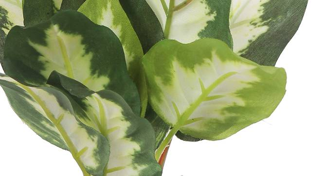 Walter Artificial Plant (White) by Urban Ladder - Front View Design 1 - 315347
