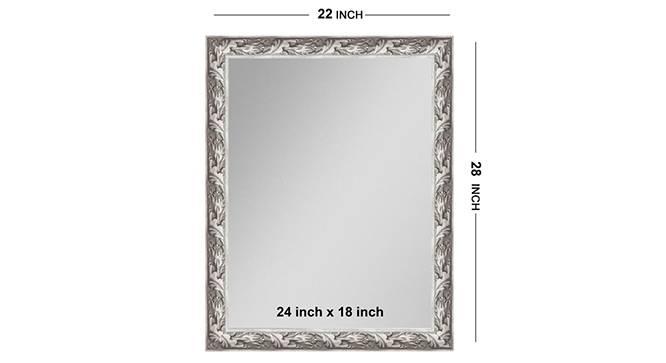 Caitrin Bathroom Mirror (Silver) by Urban Ladder - Front View Design 1 - 316274