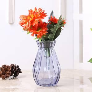 Storm vase transp lp