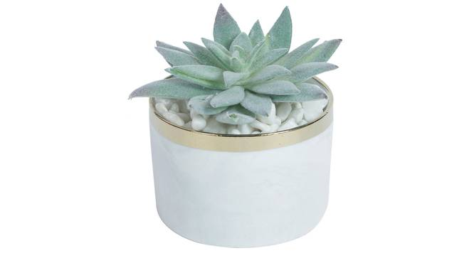 Laura Artificial Plant With Pot (Green) by Urban Ladder - Front View Design 1 - 317800