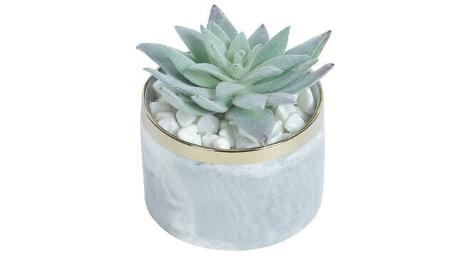 Laura Artificial Plant With Pot (Green) by Urban Ladder - Design 1 Full View - 317803