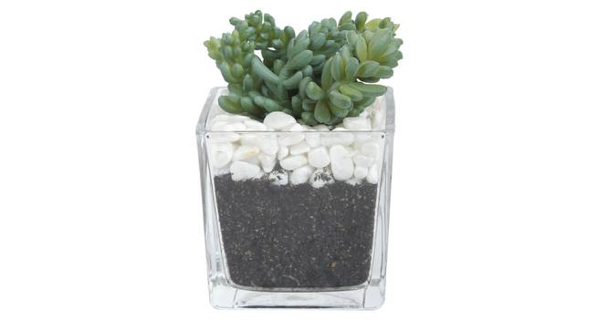 Celiea Artificial Plant With Pot (Green) by Urban Ladder - Design 1 Full View - 317811
