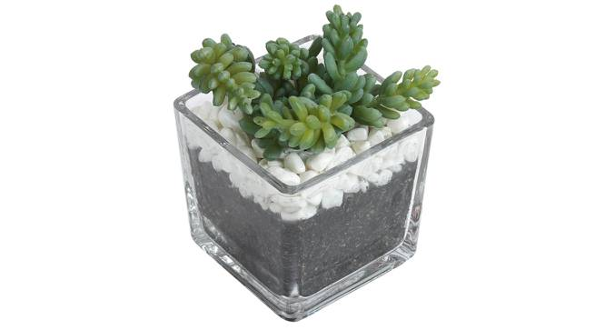 Celiea Artificial Plant With Pot (Green) by Urban Ladder - Front View Design 1 - 317812