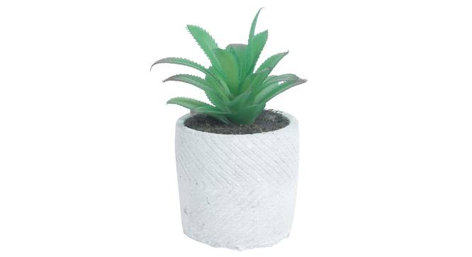 Chiara Artificial Plant With Pot (Green) by Urban Ladder - Design 1 Full View - 317823