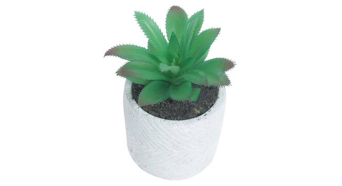 Chiara Artificial Plant With Pot (Green) by Urban Ladder - Front View Design 1 - 317824