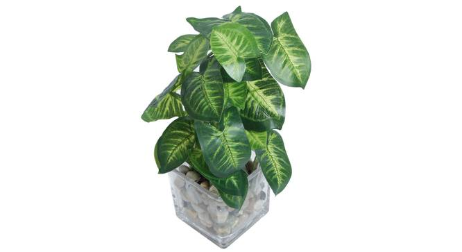 Lara Artificial Plant With Pot (Green) by Urban Ladder - Front View Design 1 - 317828