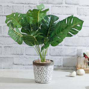 Artificial Plants Design