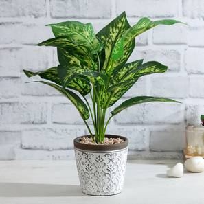 Artificial plant lp