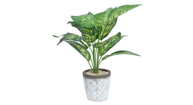 Alessia Artificial Plant With Pot (Green) by Urban Ladder - Design 1 Full View - 317879