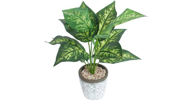 Alessia Artificial Plant With Pot (Green) by Urban Ladder - Front View Design 1 - 317880