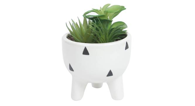 Olivia Artificial Plant With Pot (Green) by Urban Ladder - Design 1 Full View - 317891