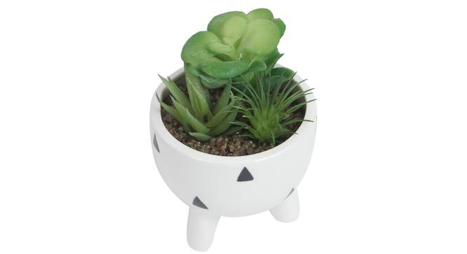 Olivia Artificial Plant With Pot (Green) by Urban Ladder - Front View Design 1 - 317892