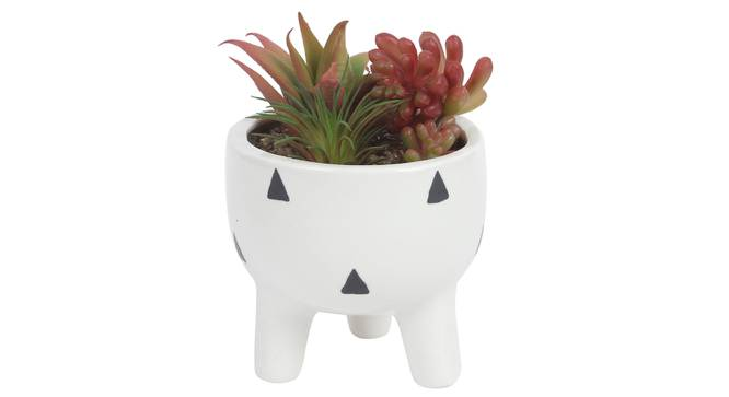 Olivia Artificial Plant With Pot (Red) by Urban Ladder - Design 1 Full View - 317895