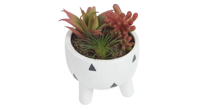 Olivia Artificial Plant With Pot (Red) by Urban Ladder - Front View Design 1 - 317896