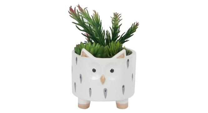 Pinatra Artificial Plant With Pot (Green) by Urban Ladder - Design 1 Full View - 317907
