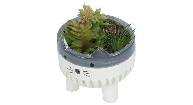 Alice Artificial Plant With Pot (Green) by Urban Ladder - Front View Design 1 - 317924