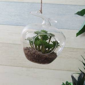 Noemi Artificial Plant With Pot (Green) by Urban Ladder - Design 1 Full View - 317934